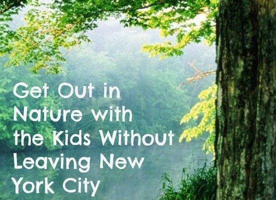 Get Out in Nature with the Kids Without Leaving New York City