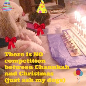 There is NO Competition between Chanukah and Christmas (just ask my dogs)