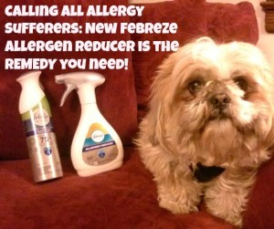 Calling All Allergy Sufferers: New Febreze Allergen Reducer is the REMEDY you need!