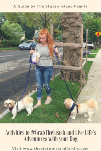 Activities to #GrabTheLeash and Live Life's Adventures with your Dog